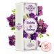 Violette de Toulouse - Flavor Hit