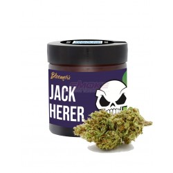 Jack Herer - Bloomers CBD