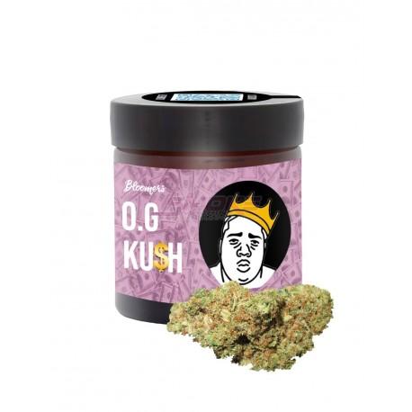 OG Kush - Bloomers