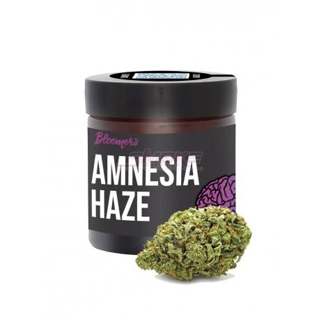 Amnesia haze - Bloomers CBD