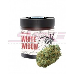 White widow - Bloomers CBD